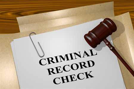 canadian criminal record check online